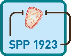 SPP 1923 Logo